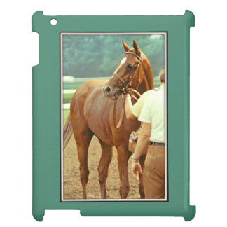 Affirmed Thoroughbred Racehorse 1978 Cover For The iPad 2 3 4