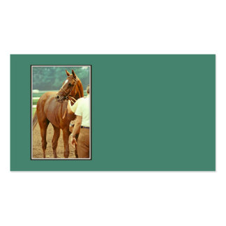 Affirmed Thoroughbred Racehorse 1978 Double-Sided Standard Business Cards (Pack Of 100)