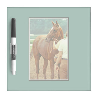 Affirmed Thoroughbred Racehorse 1978 Dry-Erase Board