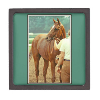 Affirmed Thoroughbred Racehorse 1978 Gift Box