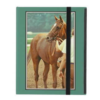 Affirmed Thoroughbred Racehorse 1978 iPad Case