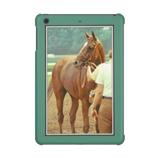 Affirmed Thoroughbred Racehorse 1978 iPad Mini Retina Cover