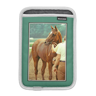 Affirmed Thoroughbred Racehorse 1978 iPad Mini Sleeves