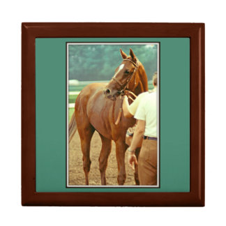 Affirmed Thoroughbred Racehorse 1978 Jewelry Box