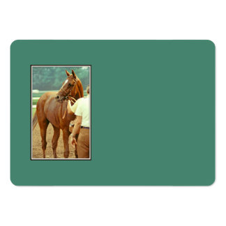 Affirmed Thoroughbred Racehorse 1978 Large Business Card