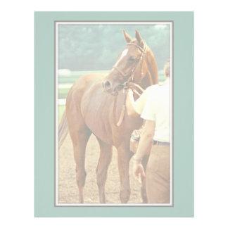 Affirmed Thoroughbred Racehorse 1978 Letterhead