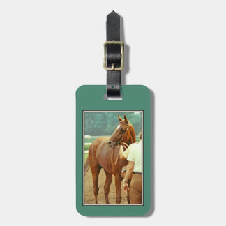 Affirmed Thoroughbred Racehorse 1978 Luggage Tag