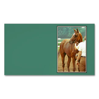 Affirmed Thoroughbred Racehorse 1978 Magnetic Business Card