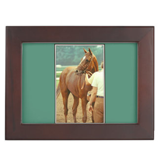 Affirmed Thoroughbred Racehorse 1978 Memory Box