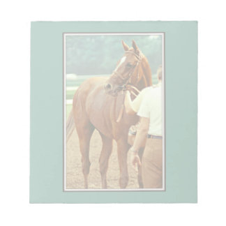Affirmed Thoroughbred Racehorse 1978 Notepad