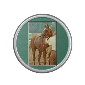 Affirmed Thoroughbred Racehorse 1978 Bluetooth Speaker