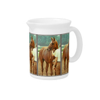 Affirmed Thoroughbred Racehorse 1978 Pitchers