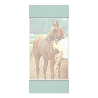 Affirmed Thoroughbred Racehorse 1978 Rack Card