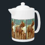 """Affirmed Thoroughbred Racehorse 1978 Teapot<br><div class=""""desc"""">My Horse Racing Photo of Triple Crown Winner Affirmed unsaddled after winning the Jim Dandy Stakes at Saratoga Race Track in New York on July 8th 1978.</div>"""