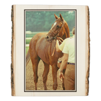 Affirmed Thoroughbred Racehorse 1978 Wood Panel
