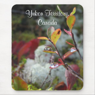 AFFl Autumn Forest Floor Mouse Pad