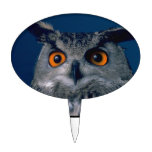 Affordable Owl Holiday Gift Cake Topper