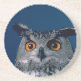 Affordable Owl Holiday Gift Drink Coaster
