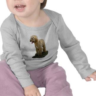 Afghan Baby T-Shirt