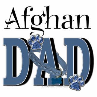 Afghan DAD Photo Sculptures