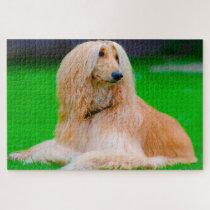 Afghan Greyhound Dog. Jigsaw Puzzle