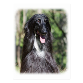 Afghan Hound AA017D-119 Post Cards