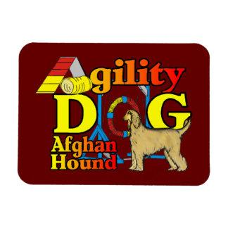 Afghan Hound Agility Dog Rectangular Photo Magnet