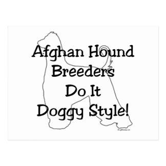 Afghan Hound Breeders Postcard