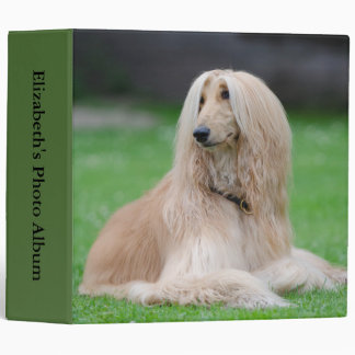 Afghan Hound dog beautiful photo album 3 Ring Binder