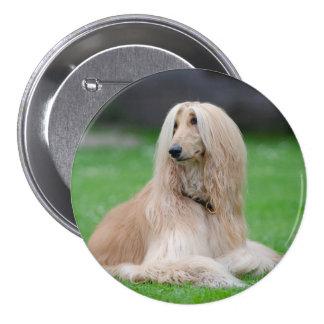 Afghan Hound dog beautiful photo round button