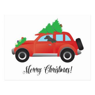 Afghan Hound Dog - Car with Christmas Tree on Top Postcard