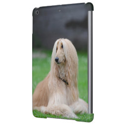 Case Savvy Glossy Finish iPad Air Case with Afghan Hound Phone Cases design