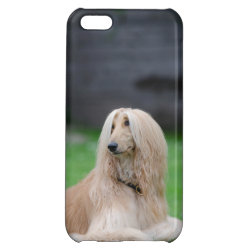 Case Savvy Matte Finish iPhone 5C Case with Afghan Hound Phone Cases design