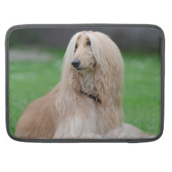 Macbook Pro 15' Flap Sleeve with Afghan Hound Phone Cases design