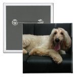 Afghan Hound Dog Square Pin