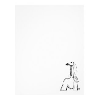 Afghan Hound Gesture Sketch Letterhead
