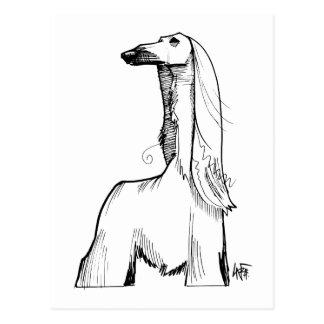 Afghan Hound Gesture Sketch Postcard