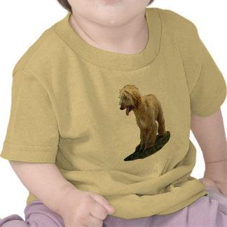Afghan Hound Gift Shirt