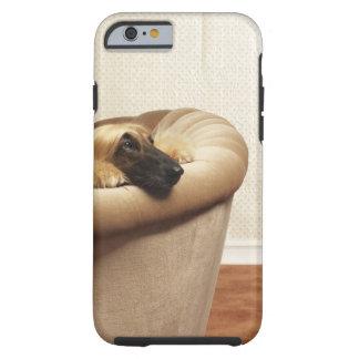 Afghan hound lying on sofa tough iPhone 6 case
