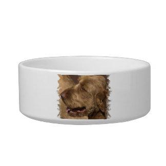 Afghan Hound Pet Bowl Cat Water Bowls