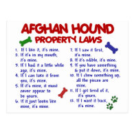 Afghan Hound Property Laws 2 Post Card