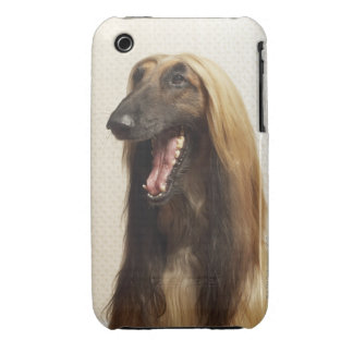 Afghan hound sitting in room iPhone 3 Case-Mate cases