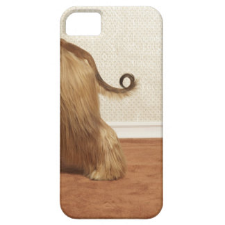 Afghan hound standing in room, end section iPhone SE/5/5s case