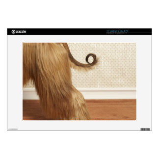 Afghan hound standing in room, end section laptop decals