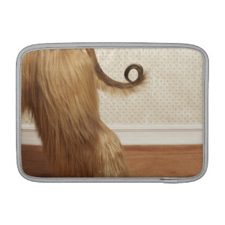 Afghan hound standing in room, end section sleeve for MacBook air