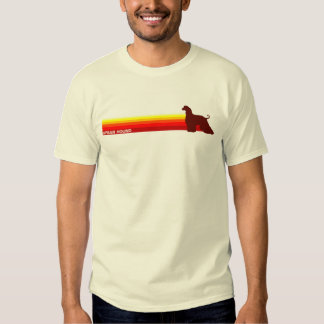 Afghan Hound With Stripes T-Shirt