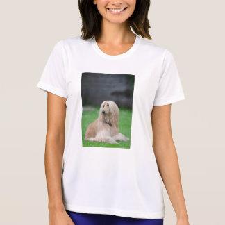 afghan-laying T-Shirt