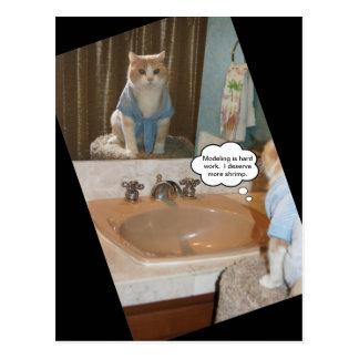 Afirmación divertida del gato sobre un aumento postales