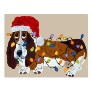 Afloramiento enredado en luces de navidad tarjeta postal