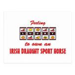 Afortunado a propio un caballo irlandés del deport tarjetas postales